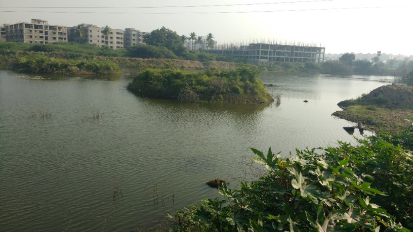 Lakes in Chennai to get a 'smart' makeover